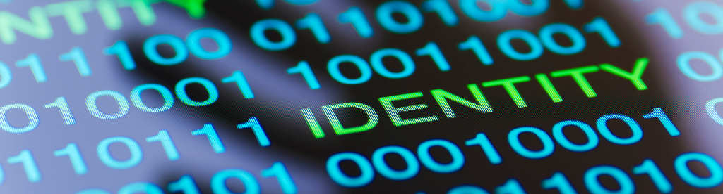 Online Security & Privacy - Personally Identifiable Information (PII)
